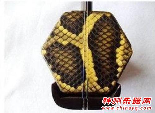 蟒皮二胡需求量巨大 制作商走私961张蟒蛇皮被抓