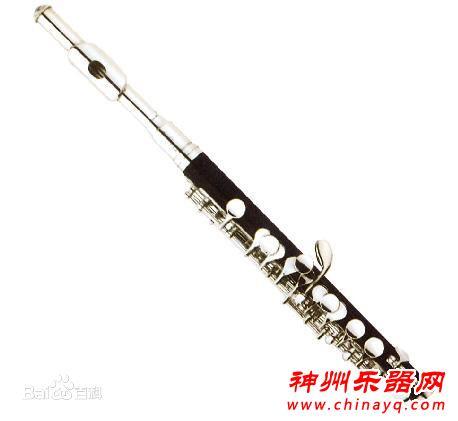 长笛与短笛哪个好学?